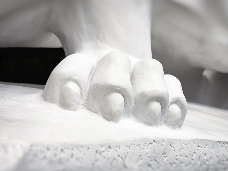 A paw of the Nittany Lion.