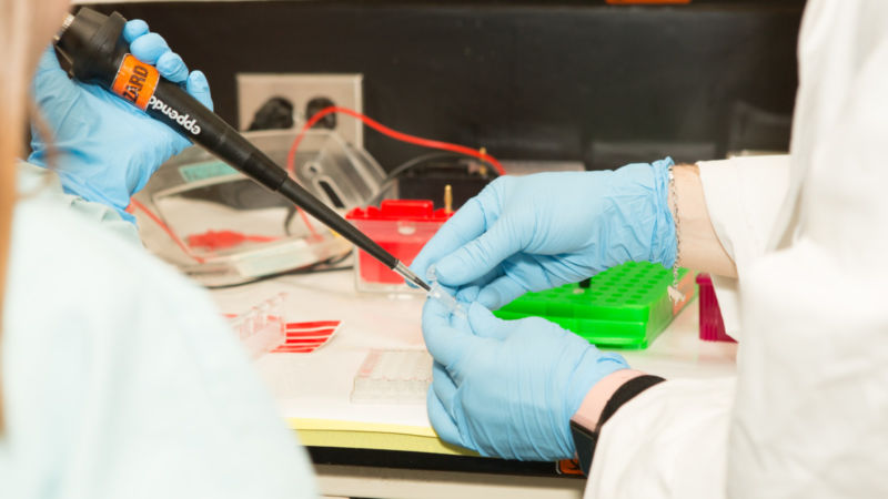 Close-up photo of getting a sample of DNA from a test tube