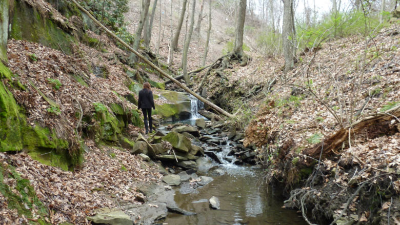 A waterfall rushes through the woods behind campus.